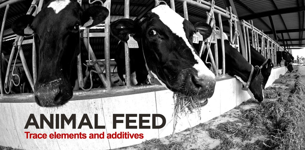animal feed trace elements and additives